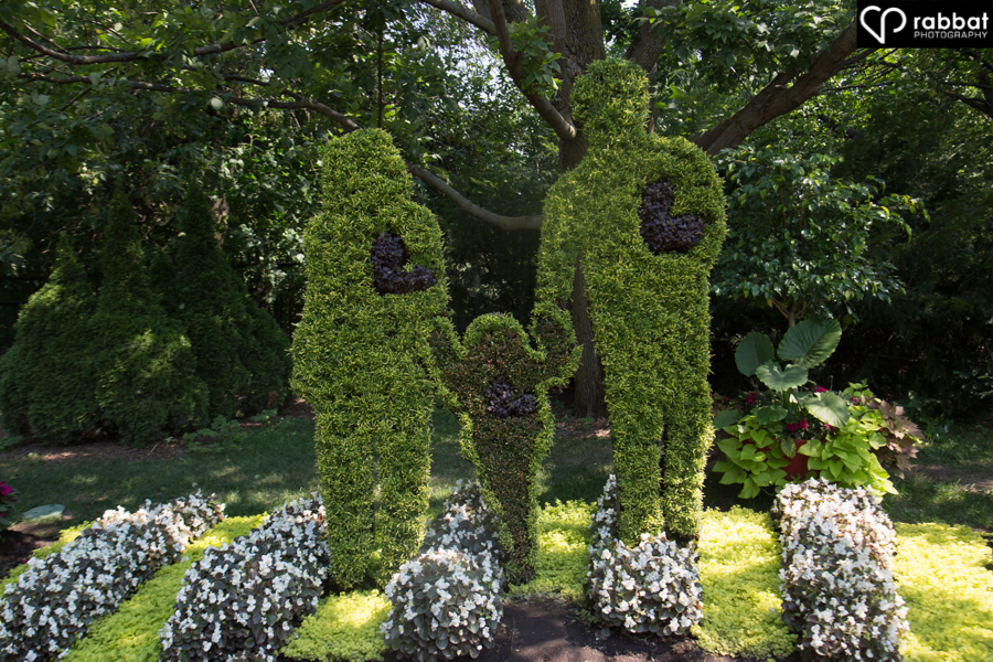 Human family made out of bushes