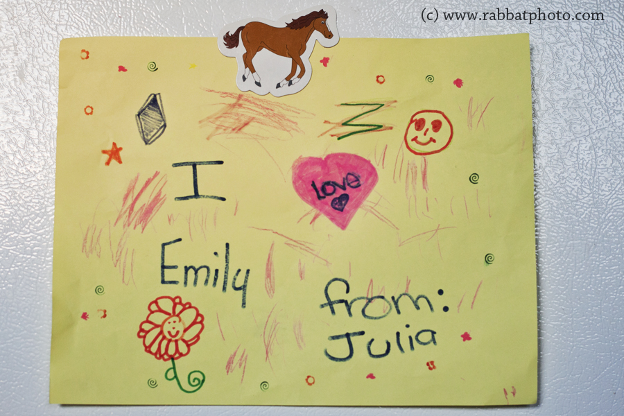 Picture Julia made for Emily